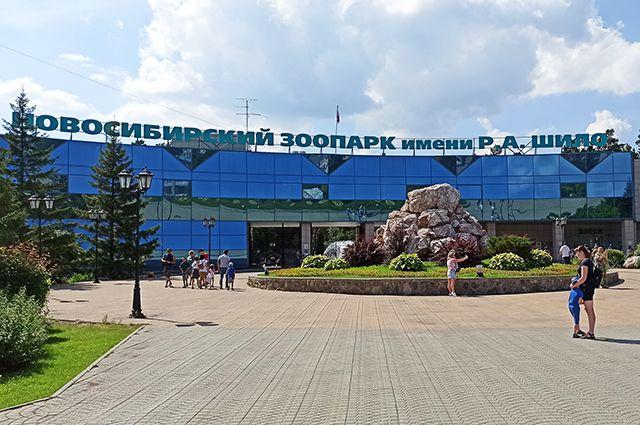 Новосибирский зоопарк разработал стратегию развития до 2050 года