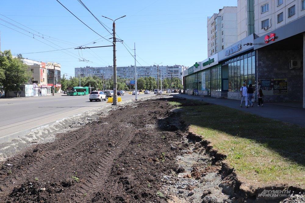 Похоже, на этом участке расширят газон.