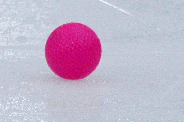 В Новосибирске умер шестикратный чемпион мира по хоккею с мячом Ишкельдин