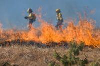 В крае сохраняется 5 класс пожарной опасности.