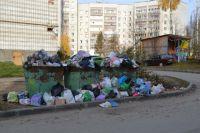 Летом количество мусора увеличивается: контейнеры переполняются, леса и обочины загрязняются.