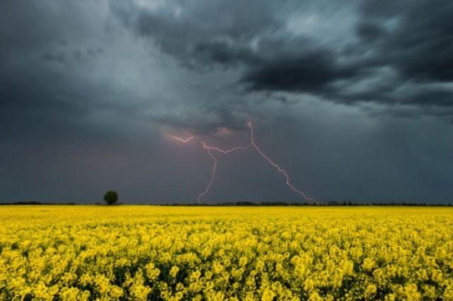 Спасатели предупреждают об ухудшении погоды: завтра Украину накроют грозы.