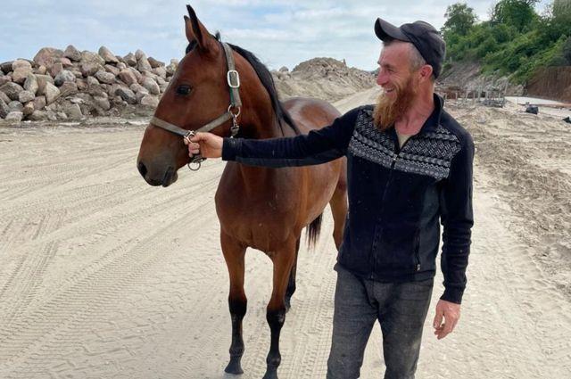 На пляж в Зеленоградске вышел конь