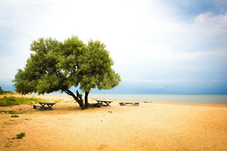 Пляж поселка Пересыпь в Темрюкском районе состоит из песка и мелкого ракушечника.
