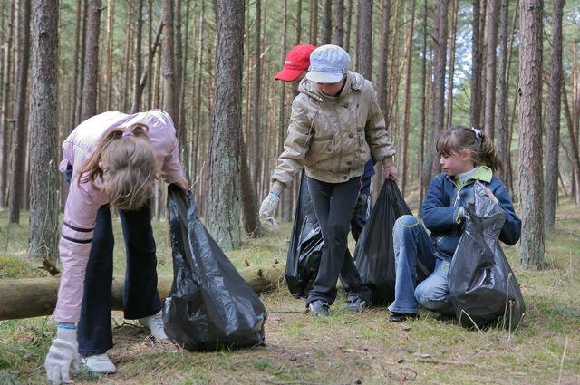 Раньше ребята убирали парки и скверы, теперь идут в вожатые.