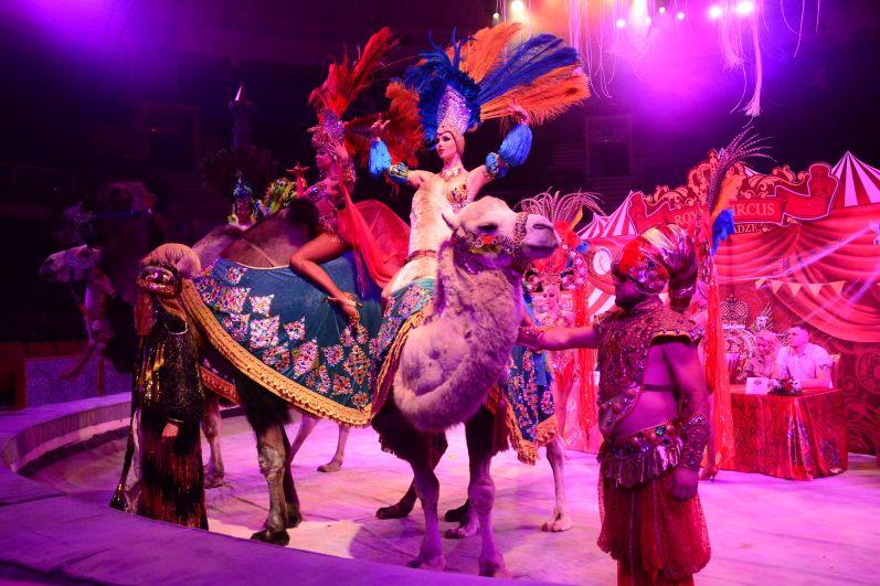 Шоу Гии Эрадзе «Песчаная сказка» в Иркутском цирке