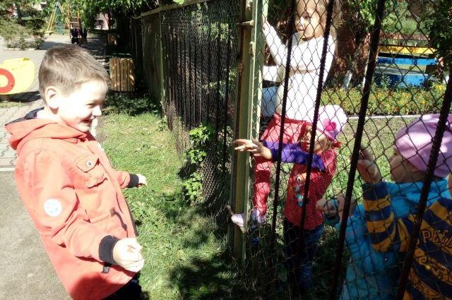 С сентября детские сады Красноярска начнут посещать больше 13 тыс. детей.