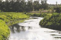 Экосистема реки почти разрушена, говорят активисты.