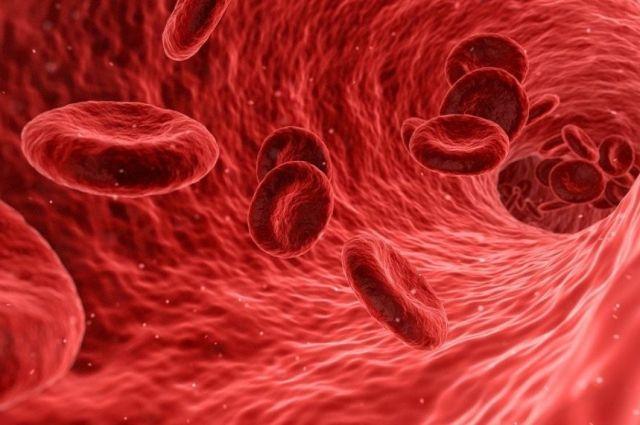 Ученые установили причину возникновения тромбов у больных COVID-19