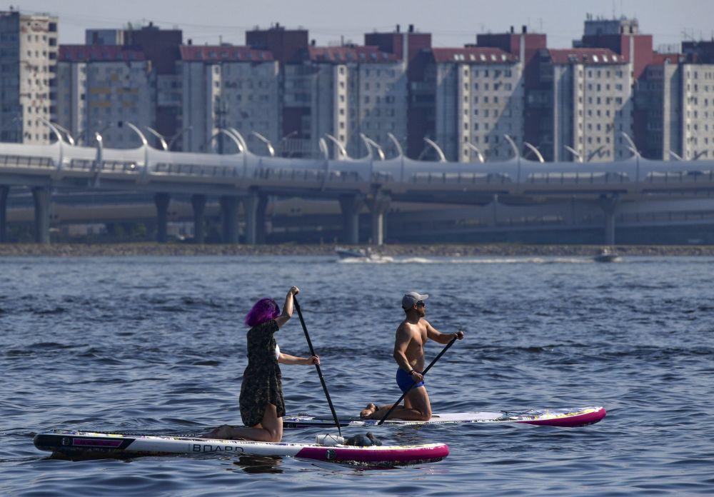 Сапсёрферы в акватории Финского залива рядом с парком 300-летия Санкт-Петербурга
