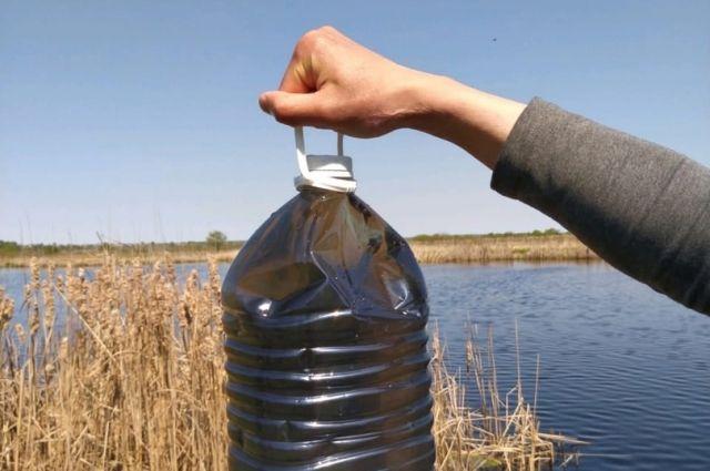 В воде городского озера выявлены превышения ПДК тяжелых металлов