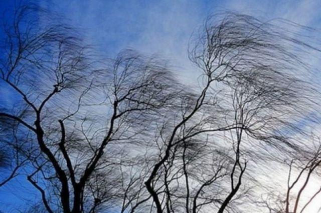 Синоптики предупредили оренбуржцев о неблагоприятных погодных условиях.