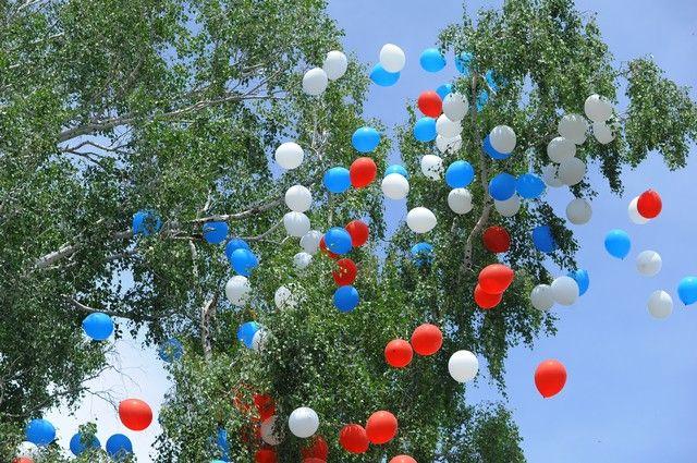 В Оренбуржье около 1 000 выпускников одиннадцатых классов получили награды «За особые успехи в учении».
