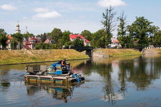 В Калининграде начнут чистить городские водоемы