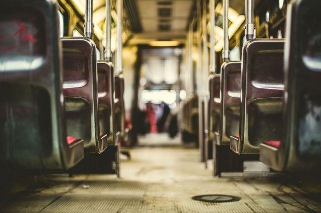 Каждый из трех автобусов вмещает до 22 пассажиров