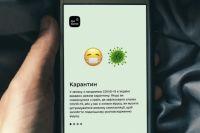 Въезд в Украину: что будет, если самовольно удалить приложение «Вдома»