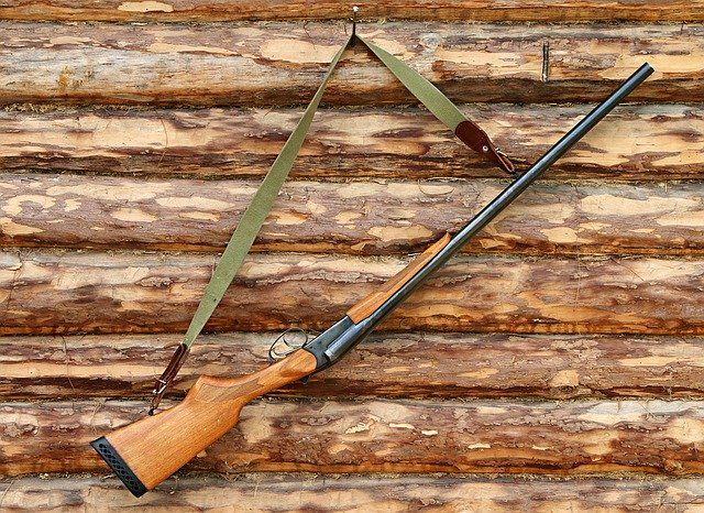 В Красноярском крае охота на косулю сейчас закрыта.