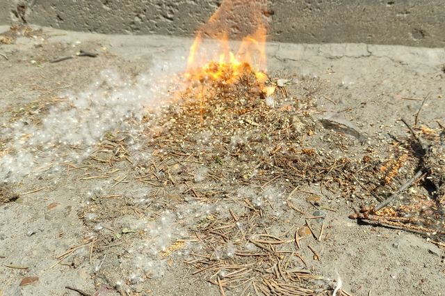 В региональном МЧС назвали муниципалитеты, на территории которых пожароопасная обстановка.