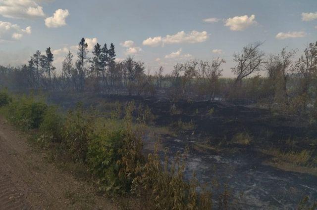 Сухая трава загорелась на третьем километре автомобильной дороги «Желтое-Кондуровка».