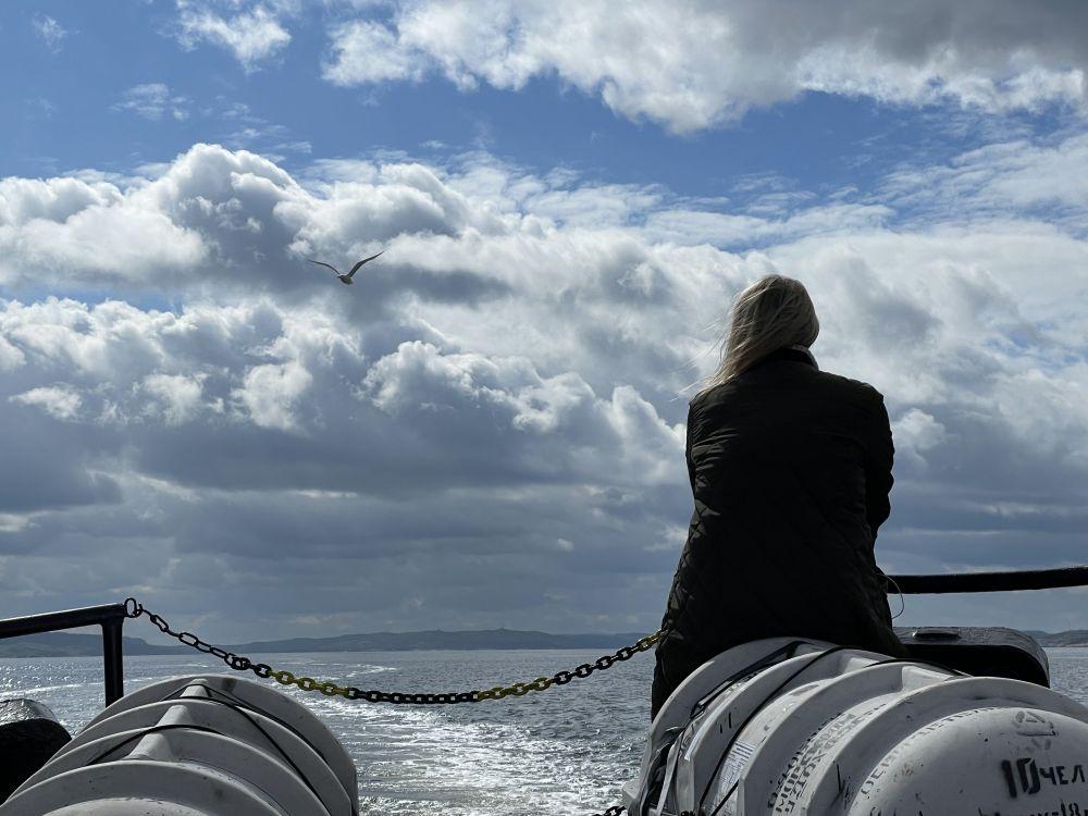 По пути через Кольский залив судно сопровождала чайка, её сносило потоком ветра, но она всё равно возвращалась к катеру.