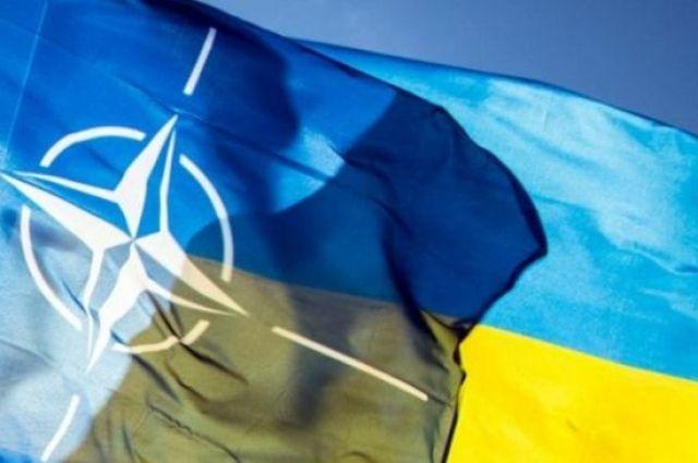 «Нужно больше»: что требует НАТО от Украины для вступления в Альянс
