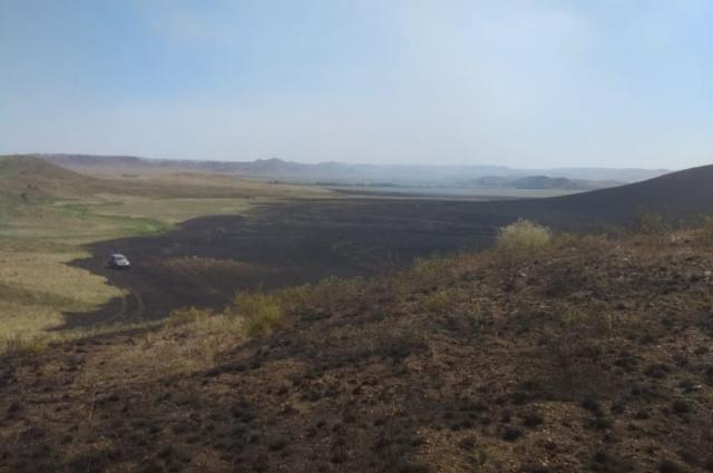 На территории заповедника «Губерлинские горы» произошел крупный пожар, уничтоживший почти 30 тысяч га.