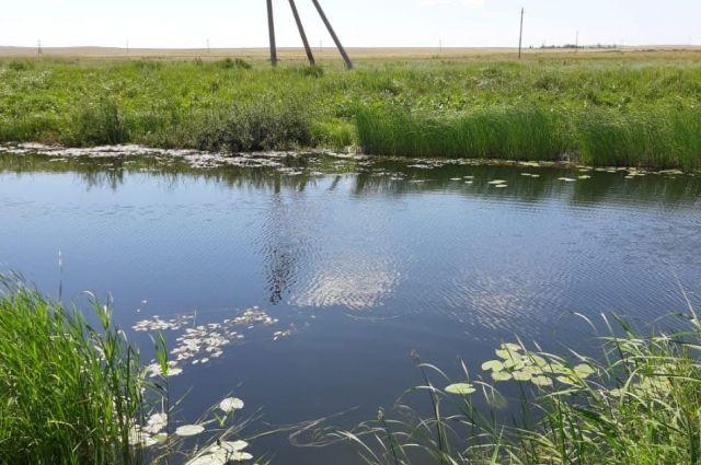 Тело утонувшего всплыло на поверхность водоема около поселка Весенний.