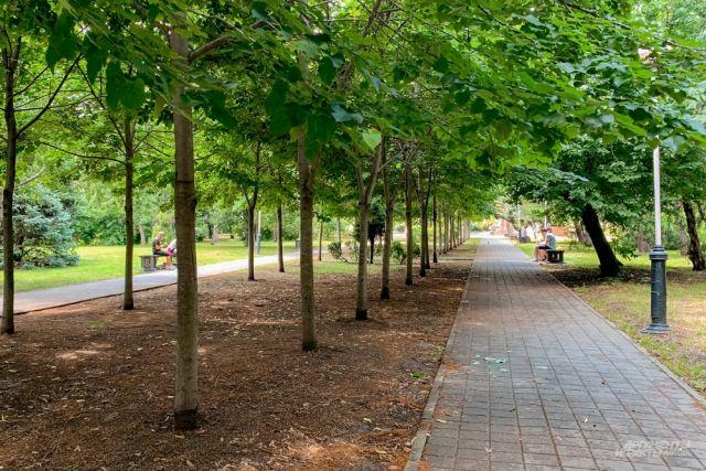 Парк Чистяковская роща в Краснодаре - одно из самых