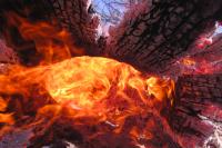 Чаще всего причиной возгорания в лесах становятся люди и грозы.