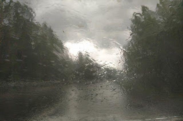 Во время движения по загородным трассам в непогоду следует быть особенно внимательным.