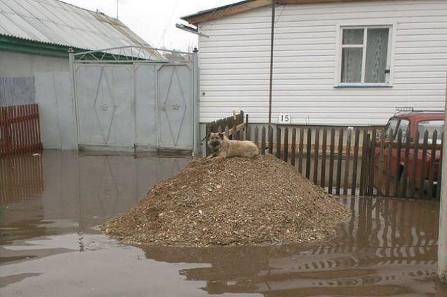 Сильные дожди и таяние снегов весной этого года привели к подтоплению поселков