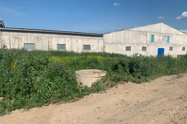 5 июля рабочие вели очистку труб канализационного колодца.