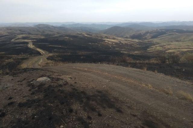 На пожаре под Медногорском удалось ликвидировать возгорание на двух боевых участках.