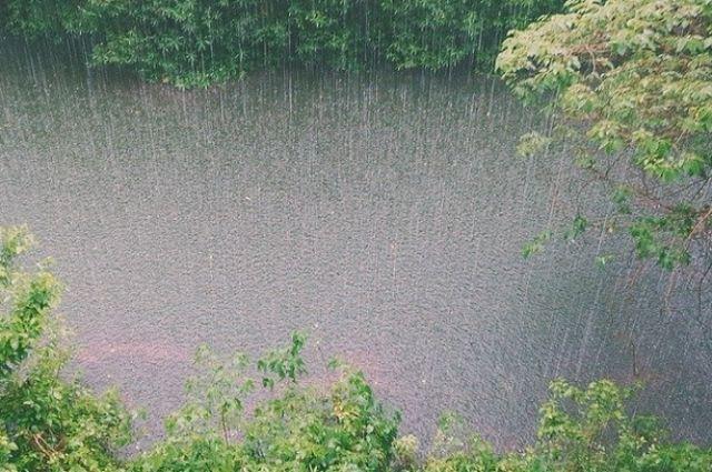 В Оренбургской области пройдет сильный ливень.