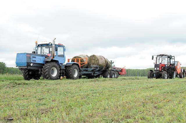Планируется заготовить 427,1 тыс. тонн грубых и сочных кормов. По состоянию на 28 июня 16 % от плана выполнили.