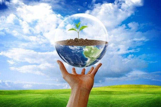 Показатели поглощения парниковых газов за счет лесного фонда в Сахалинской области вдвое выше среднероссийских.
