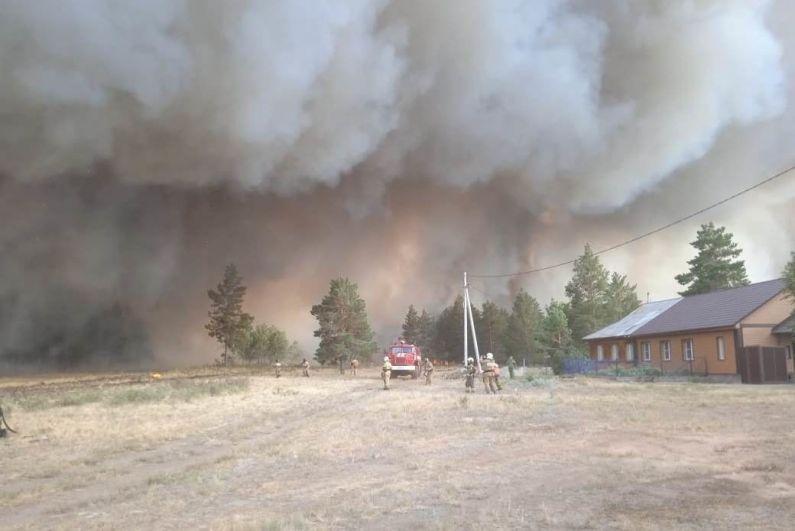 Сотрудники МЧС во время тушения лесных пожаров в Челябинской области