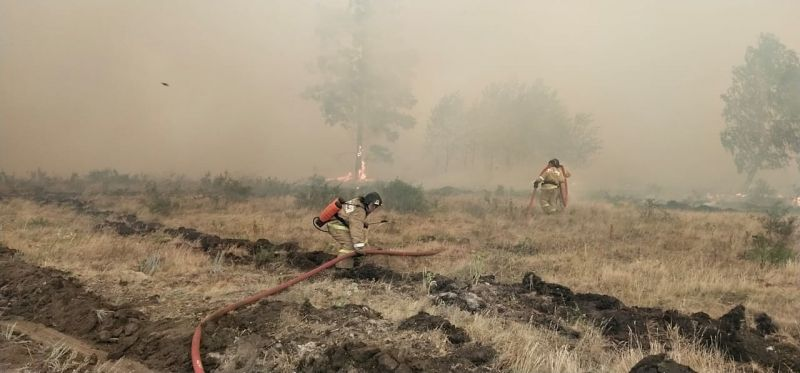 Сотрудники МЧС во время тушения лесных пожаров в Увельском муниципальном районе