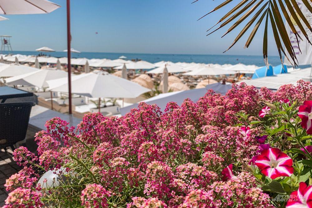 Пляж «DelMar» - один из самых комфортных и фотогеничных пляжей в городе.