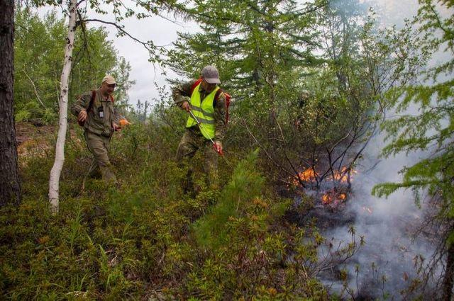 С начала пожароопасного сезона на территории лесного фонда Сахалинской области зарегистрировано 11 лесных пожаров.