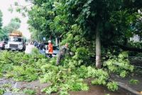 В Житомире прошел ураган с градом