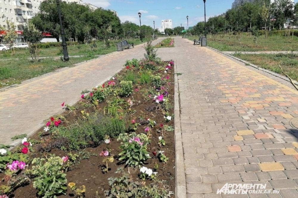 Сквер Лебедева и Сираева пока не стал любимым местом горожан.