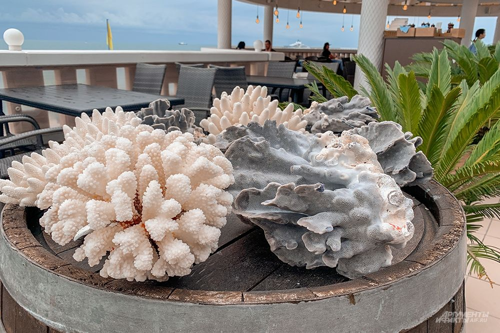 Кораллы украшают местный ресторан.