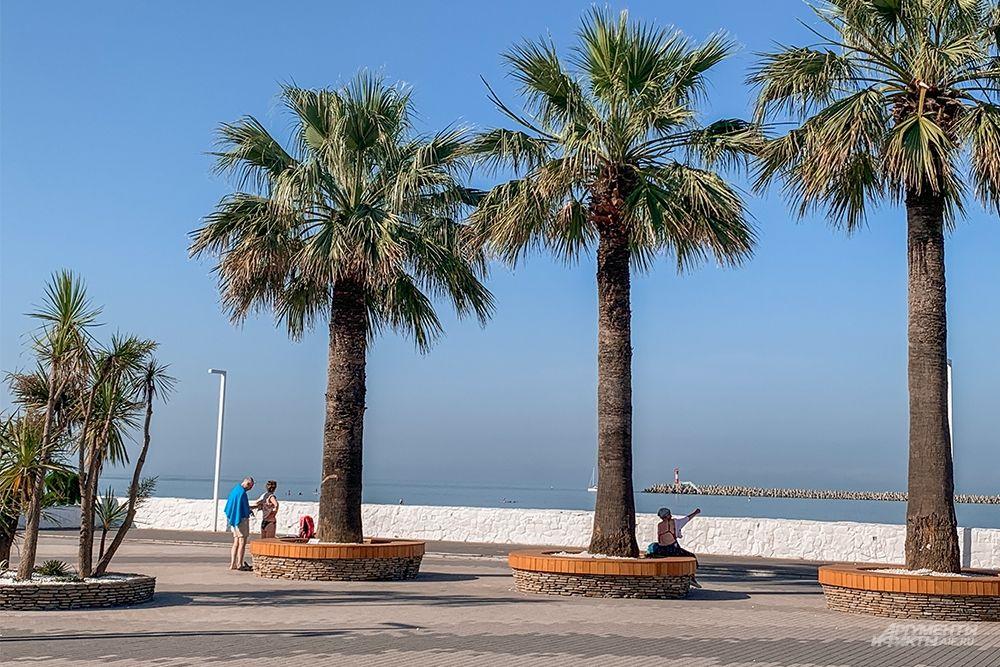 Пляжная зона начинается с пляжа «Маяк», далее за ним располагаются и другие пляжи - DelMar, Приморский, имени Мориса Тореза, Солнечный, Жемчужина.