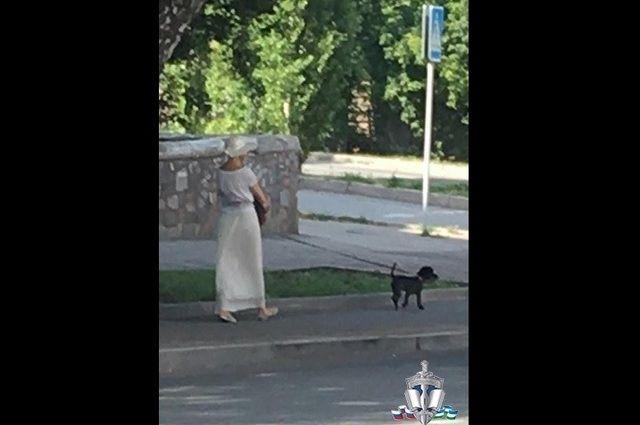 В Уфе полиция задержала «даму с собачкой» за сбыт наркотиков
