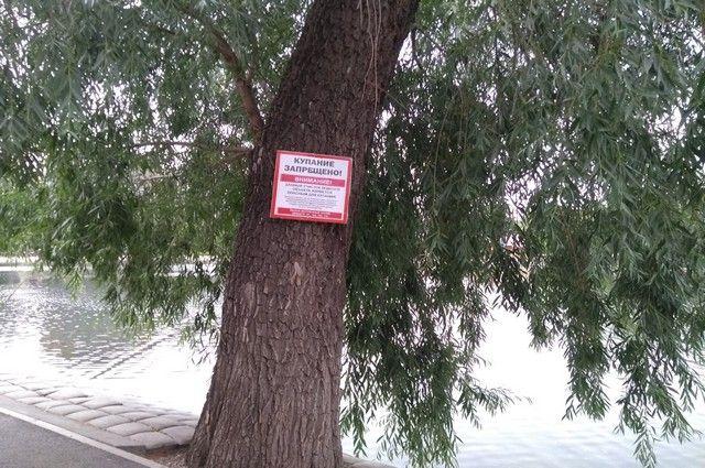 На пруду в Башкирии утонул парень, прыгавший в воду с надувного матраса