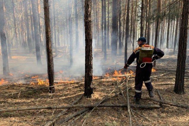Пожарные ликвидировали 24 пожара за минувшую неделю