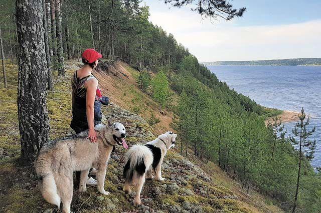 С собаками Улитины изъездили весь Пермский край.