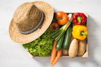 Россельхозбанк создает первую в стране открытую онлайн-базу знаний в области сельского хозяйства - платформу «Агро-wiki».