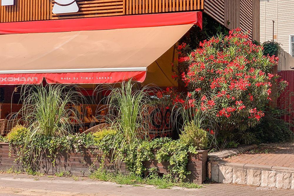 Кафе и рестораны любят украшать свои террасы густыми кустарниками.